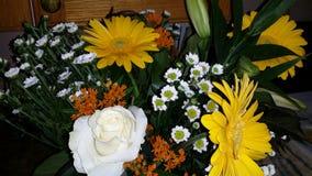 Flores alegres Imagens de Stock Royalty Free