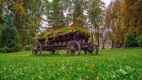 Flores alegres en un carro de madera de la maceta imagen de archivo libre de regalías