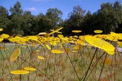 Flores amarelas abstratas no jardim. Fotografia de Stock