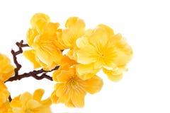 Flores amarelas artificiais Foto de Stock