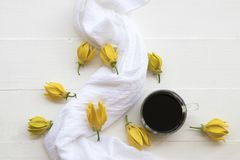 Flores amarelas do ylang de Ylang locais de Ásia com café imagens de stock