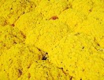 Flores amarelas dos crisântemos Imagens de Stock Royalty Free