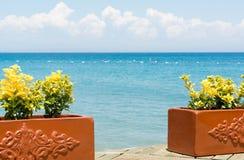 Flores amarelas e opinião do mar Mediterrâneo na costa de Turquia Imagem de Stock Royalty Free