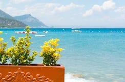 Flores amarelas e opinião do mar Mediterrâneo na costa de Turquia Imagens de Stock Royalty Free