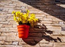 flores amarelas em um potenciômetro de flor marrom unido à parede de pedra do revestimento com textura imagem de stock