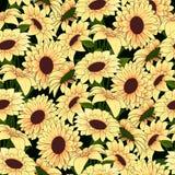 Flores amarelas em um teste padrão amarelo do vaso em um fundo escuro ilustração royalty free