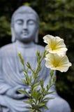 Flores amarillas con la estatua de Buda borrosa en fondo fotos de archivo libres de regalías