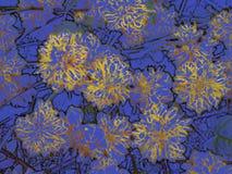 Flores amarillas en azul de la pizarra Imagenes de archivo