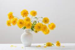Flores amarillas en florero en el fondo blanco Foto de archivo