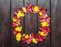 Flores amarillas en fondo de madera fotografía de archivo libre de regalías