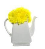 Flores amarillas en tetera Foto de archivo libre de regalías