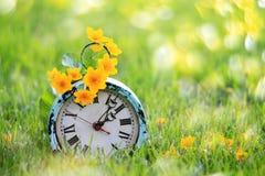 Flores amarillas en un despertador antiguo Foto de archivo