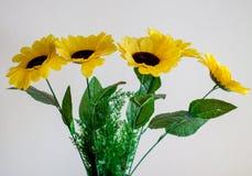Flores amarillas en un fondo ligero Fotos de archivo libres de regalías