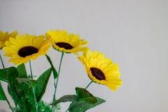 Flores amarillas en un fondo ligero Fotos de archivo