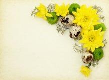 Flores amarillas, verdes y blancas con los huevos de codornices en el papel viejo Imagenes de archivo