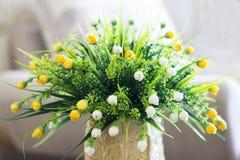 Flores amarillas y blancas Imágenes de archivo libres de regalías