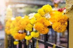 Flores amarillas y blancas frescas que cuelgan en la casa de las bebidas espirituosas Fotografía de archivo libre de regalías