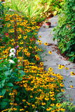 Flores amarillas y camino de piedra Fotografía de archivo libre de regalías