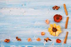Flores amarillas y rojas en un fondo de madera azul Textura, fondo Lugar para el concepto de la opinión superior del texto para u imagen de archivo libre de regalías