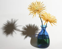 Flores & vaso Foto de Stock