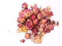 Flores & vaso Imagem de Stock Royalty Free