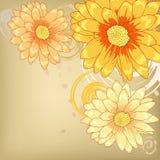 Flores anaranjadas con el ornamento Imágenes de archivo libres de regalías