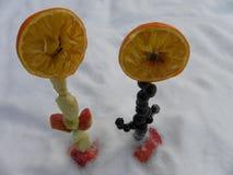 Flores anaranjadas con los troncos, nieve de la fruta Foto de archivo