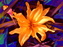 Flores anaranjados de los pétalos de la flor stock de ilustración