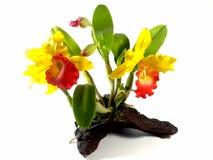 Flores artificiais Fotos de Stock Royalty Free