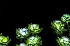 Flores artificiais da luz da cor da noite fotografia de stock royalty free