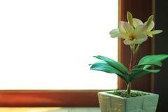 Flores artificiais do plumeria no potenciômetro Fotografia de Stock Royalty Free