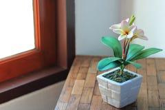 Flores artificiais do plumeria no potenciômetro Fotos de Stock Royalty Free