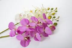 Flores artificiais do rosa e as brancas isoladas no fundo branco fotografia de stock