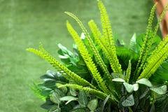 Flores artificiais dos ramalhetes imagem de stock