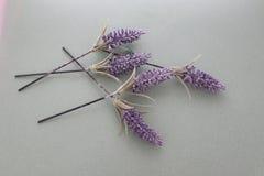 Flores artificiales cruzadas sobre uno a olor y color de la lavanda imagenes de archivo