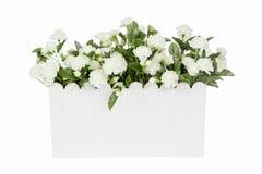 Flores artificiales del jazmín árabe en el aislante plástico blanco del florero Fotos de archivo libres de regalías