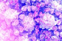 Flores artificiales del paño para el fondo Foto de archivo