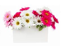 Flores artificiales del rosa y blancas en el florero blanco aislado Imágenes de archivo libres de regalías