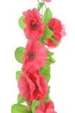 Flores artificiales rosadas colgantes Imagen de archivo