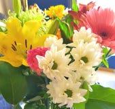 Flores Assorted Fotografia de Stock