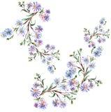 Flores azuis, aquarela Fotos de Stock