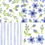 Flores azuis da aquarela, teste padrão sem emenda das tiras Grupo bonito ilustração stock