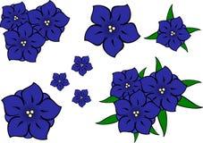 Flores azuis da genciana. ilustração stock