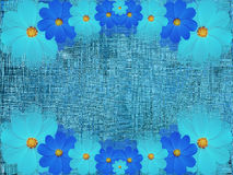 Flores azuis de turquesa, no fundo de azul-turquesa Composição floral brilhante Imagem de Stock