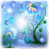 Flores azuis feericamente do mum e do bebê Fotos de Stock