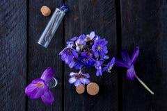 flores azuis no fundo de madeira Imagem de Stock Royalty Free