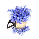 Flores azuis no vaso Imagem de Stock Royalty Free