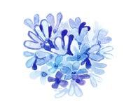 Flores azules de la acuarela Imagen de archivo libre de regalías