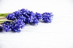 Flores azules en una tabla de madera blanca Decopation Fotos de archivo