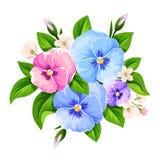 Flores azules, rosadas y púrpuras del pensamiento Ilustración del vector Imagenes de archivo